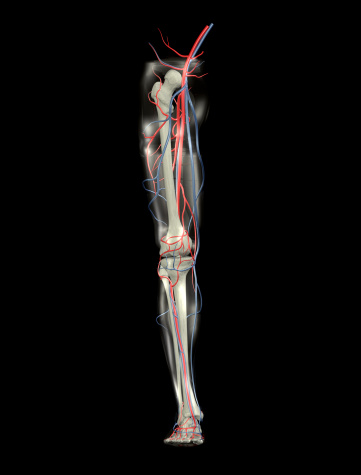 Chiropractic care can assist with knee pain.